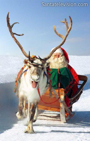 Santa Claus' reindeer ride in Lapland