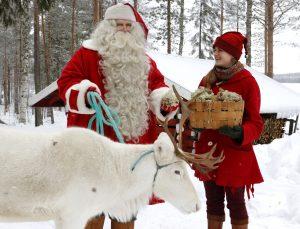 Joulupukki ja tonttu antavat porolle superjäkälää