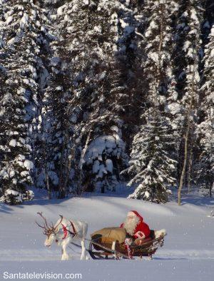 Le Père Noël faisant une course de rennes dans une forêt de la Laponie Finlandaise.