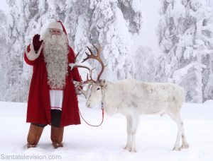 Santa Claus and one of his reindeer in the forest of Lapland, Finland