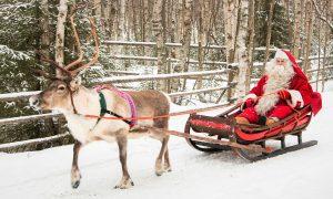 Weihnachtsmann macht Rentierschlittenfahrt im Weihnachtsmanndorf in Lappland