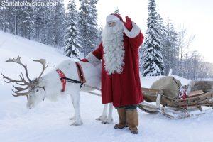 Der Weihnachtsmann und eines seiner Rentiere im Wald in Lappland