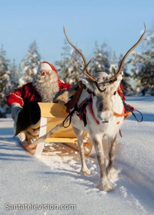 Father Christmas and reindeer in Lapland – home region of Santa Claus in Finland