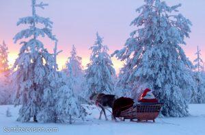 La corsa delle renne di Babbo Natale in Lapponia in Finlandia