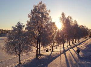 Début de l'hiver à Rovaniemi en Laponie finlandaise