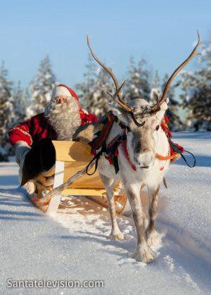 Laponie - le pays du Père Noël et ses rennes en Finlande