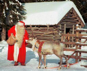 Papá Noel / Santa Claus alimentando a un reno en la Laponia finlandesa