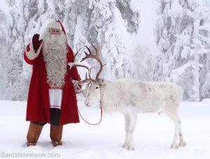 Papá Noel Santa Claus y uno de sus renos en los bosques de Laponia, Finlandia