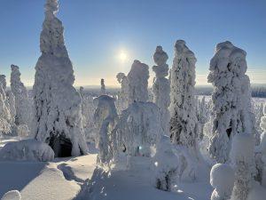 Paysage hivernale à Salla en Laponie finlandaise