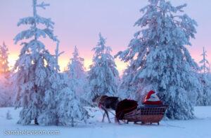 Le Père Noël en promenade avec son renne, sous le coucher de soleil de Laponie finlandaise