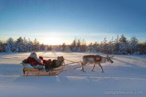 Le Père Noël entraîne son renne en Laponie finlandaise