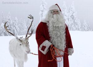 Le Père Noël marche dans la nature avec son renne en Laponie finlandaise