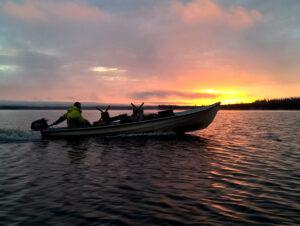 Le soleil de minuit dans le Lac Miekojärvi à Pello en Laponie finlandaise