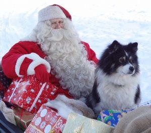 Weihnachtsmann und sein Rentierhund in Lappland