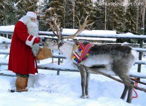 Weihnachtsmann füttert eines seiner Rentiere in Lappland